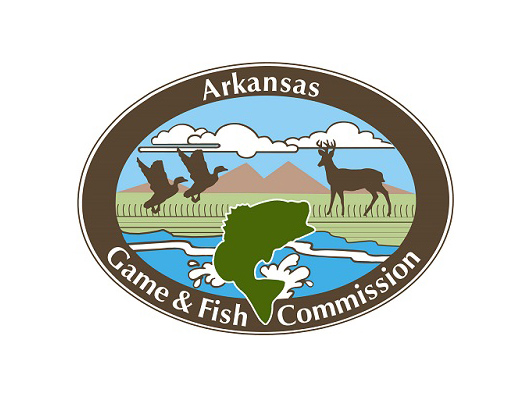 New director named for arkansas game and fish commission for Arkansas game and fish